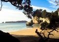 Paradise hidden beach gorgeous secret in new zealand Stock Images