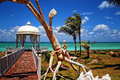 Paradise island cuba varadero exotic romantic for honeymoon Stock Photos