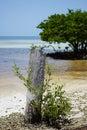 Paradise island in Florida Keys Royalty Free Stock Photo