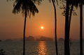 Paradise islands sunset tropical coconut trees Royalty Free Stock Photo