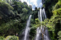Paradise sekumpul waterfall in north bali Stock Images