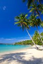 Paradise vacation on a tropical island Stock Photos