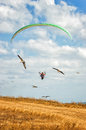 Paraglide birds blue sky clouds Stock Image