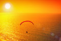 Paraglider silhouette of soaring over sea at sunset Stock Image