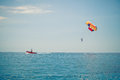 Parasailing above the blue sea Stock Images