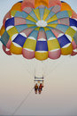 Parasailing two people at summer evening Stock Image