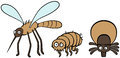 Parasites mosquito flea and tick cartoon illustration of human dog Stock Image