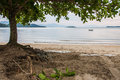Paraty Tranquil Beach Royalty Free Stock Image