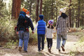 Parents and children walking in a forest, back view close up