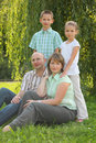 Parents at grass, children behind of them Royalty Free Stock Photography