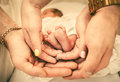 Parents holding baby feet in their hands Royalty Free Stock Photo