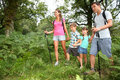 Parents with kids in forest family on a trekking day countryside Stock Photo