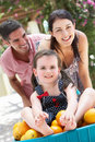 Parents Pushing Daughter In Wheelbarrow Stock Photos