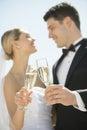 Pares que tuestan a champagne flutes against sky Imagen de archivo libre de regalías