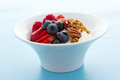 Parfait with fresh fruits and granola in white bowl Royalty Free Stock Image