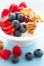 Parfait with fresh fruits and granola in white bowl Stock Images