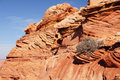 Paria Canyon-Vermilion Cliffs Wilderness, Arizona, USA Royalty Free Stock Photos
