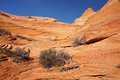 Paria Canyon-Vermilion Cliffs Wilderness, Arizona, USA Stock Photography