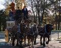 Paris horse parade Royalty Free Stock Image