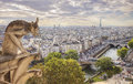 Paris View From Notre Dame Royalty Free Stock Photo