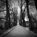 Parisien walkway Stock Images