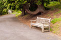 Park alley and bench scene with old wooden Stock Image