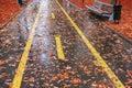Park in Autumn Rain Royalty Free Stock Photo