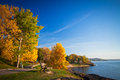 Park during autumn season a view of a and lake Royalty Free Stock Photography