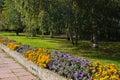 Park in an autumn sunny day Royalty Free Stock Photos