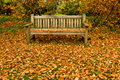 Park Bench in Autumn Stock Images