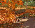 Park Bench in Autumn Leaves Stock Photo