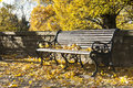 Park bench in autumn sunny day Royalty Free Stock Photography