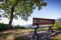 Park bench at a in berlin nice background Royalty Free Stock Images