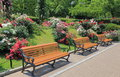 Park bench flower garden Royalty Free Stock Photo