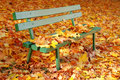 Park bench under fall cover Royalty Free Stock Image