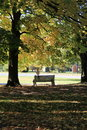 Park bench under shady trees old wood tucked makes a nice place for people to sit alone or with someone else to have some privacy Royalty Free Stock Photography