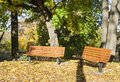 Park benches in autumn sunny day Royalty Free Stock Images