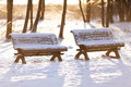 Park benches in winter with snow Royalty Free Stock Image