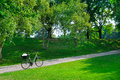 park, bike and bicycle path Royalty Free Stock Photo