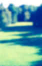 Park blurred background public green grass and trees light and shadow vintage photo effect Stock Photos