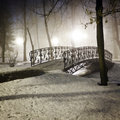 Park bridge in winter foggy night Royalty Free Stock Image