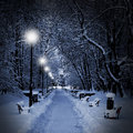 Park covered with snow at night Stock Photo