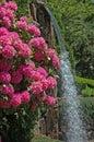 Kvety vodopád