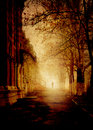 Park in a fog grunge image gothic scene Royalty Free Stock Photography