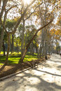 The park of gulhane istanbul famous at european side Royalty Free Stock Photos