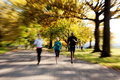 Park Jogging Royalty Free Stock Images