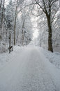Park lane covered by snow at winter snowy at late afternoon Royalty Free Stock Photos