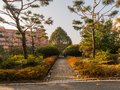 Park like setting with a brick walkway Royalty Free Stock Photo