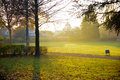 Park in the morning sun Royalty Free Stock Photo