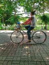 Park mother and children riding bikes in the Stock Images
